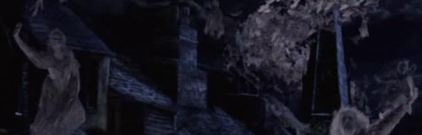 Voir film La nuit des fantômes en streaming