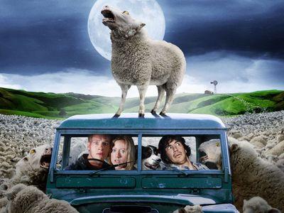 watch Black Sheep streaming