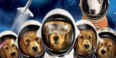 Les copains dans l'espace en streaming
