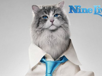 watch Nine Lives streaming