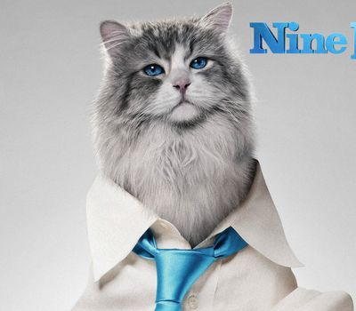 Nine Lives online