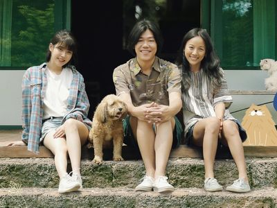 watch Hyori's Bed and Breakfast streaming