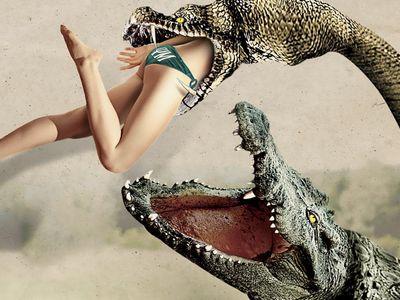 watch Lake Placid vs. Anaconda streaming