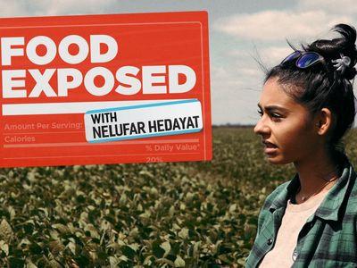 watch Food Exposed with Nelufar Hedayat streaming