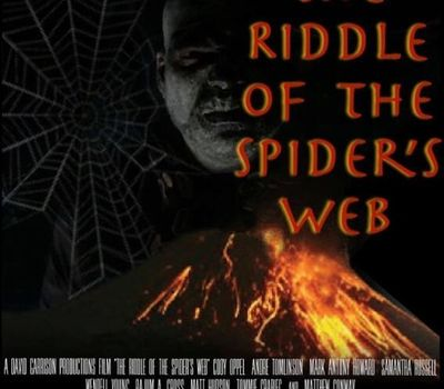 The Riddle Of The Spider's Web online