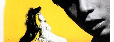 Crin blanc: Le cheval sauvage online