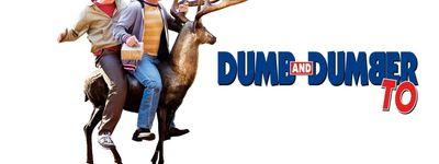 Dumb & Dumber De online