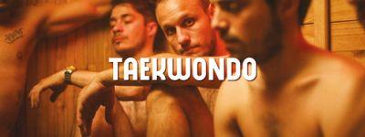 Taekwondo online