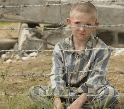 The Boy in the Striped Pyjamas online