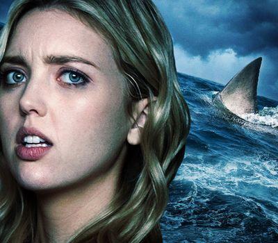 Shark Season online