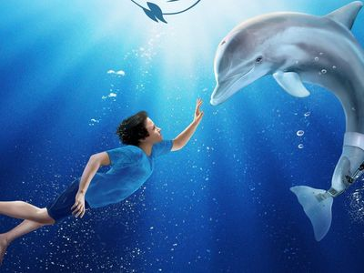 watch Dolphin Tale streaming