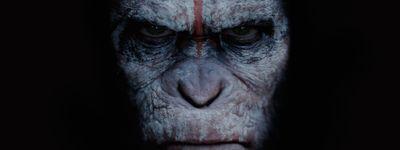 La Planète des singes : L'Affrontement online