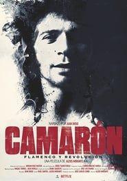 Camarón: Flamenco y revolución streaming vf