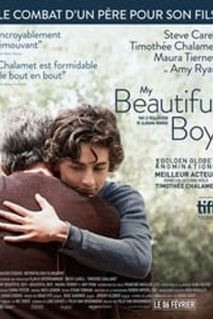 My Beautiful Boy 2018 film complet