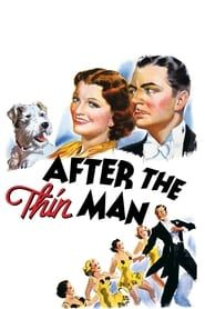 After the Thin Man streaming vf