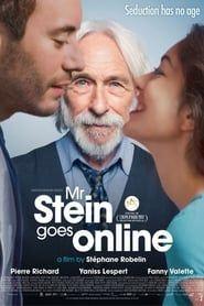 Mr. Stein Goes Online streaming vf