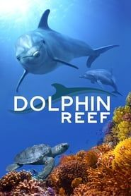 Dolphin Reef streaming vf