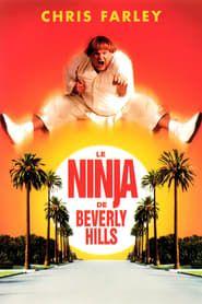 Le Ninja de Beverly Hills streaming vf