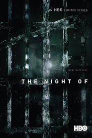 The Night Of streaming vf