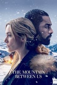 The Mountain Between Us streaming vf