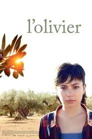 L'Olivier streaming vf