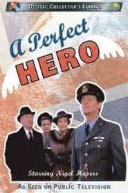 A Perfect Hero streaming vf