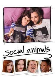 Social Animals streaming vf