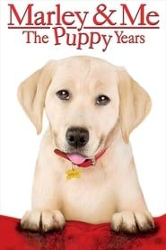 Marley & Me: The Puppy Years streaming vf