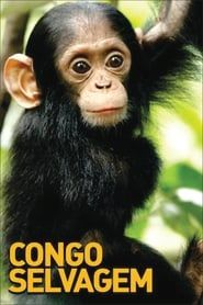 Congo Selvagem streaming vf