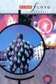 Pink Floyd: Delicate Sound of Thunder streaming vf