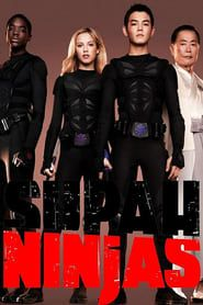 Supah Ninjas streaming vf