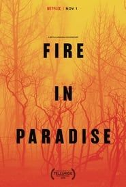 Fire in Paradise streaming vf