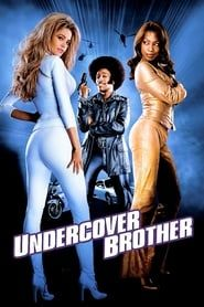 Undercover Brother streaming vf