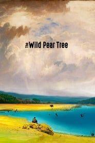 The Wild Pear Tree streaming vf