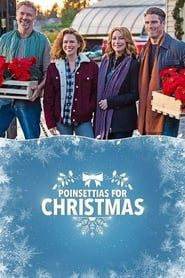 Poinsettias for Christmas streaming vf