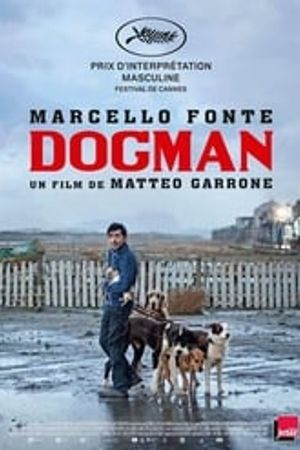 Dogman 2018 bluray film complet