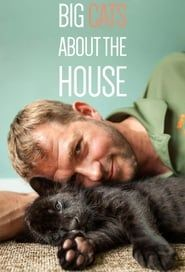 Big Cats About The House streaming vf