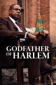 Godfather of Harlem streaming vf