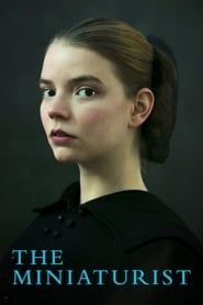 The Miniaturist streaming vf