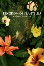Kingdom of Plants streaming vf