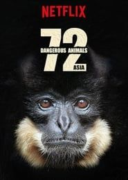 72 animaux dangereux en Asie streaming vf