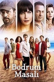 Bodrum Masalı streaming vf