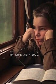 My Life as a Dog streaming vf