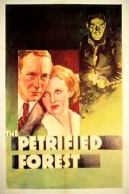 The Petrified Forest streaming vf