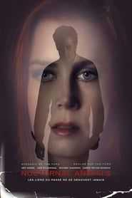Nocturnal Animals  film complet