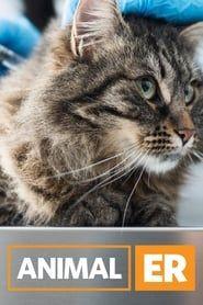 Animal ER streaming vf