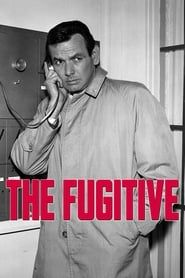 Le Fugitif streaming vf