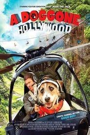 A Doggone Hollywood streaming vf