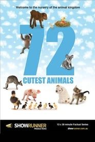 72 Animaux Mignons streaming vf