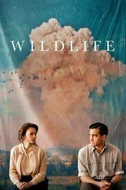 Wildlife streaming vf